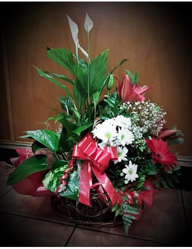 cesta de plantas y flores