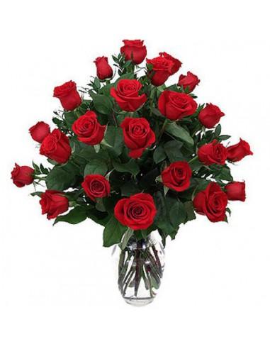 24 rosas rojas tallo largo