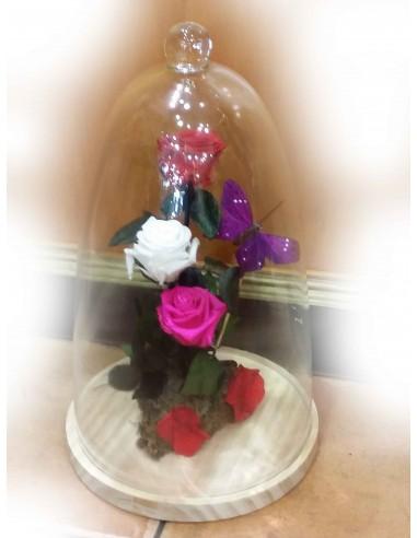 Rosas Eternas jaen1